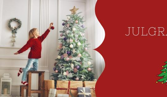 Mucho antes de la llegada del árbol de Navidad a Suecia se decoraba la casa con ramas.